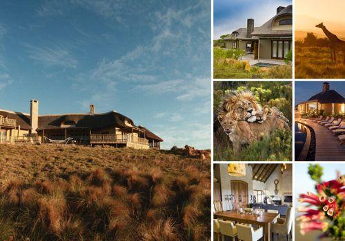 Bush Villas And Fynbos Villas