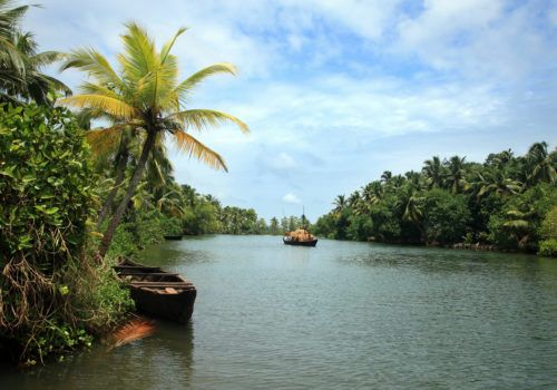 Backwater scenery from Kerala, India