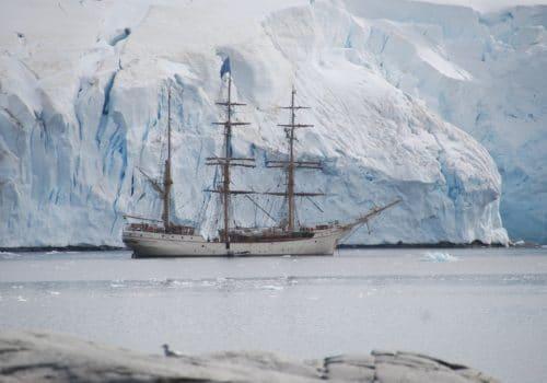 antarctic-3026822_1920