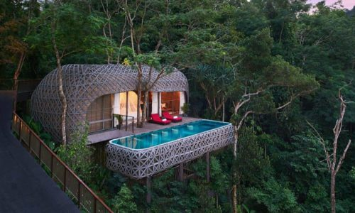 birds-nest-pool-villa-500x300.jpg