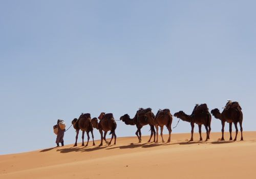 LGBT Group Trip: Morocco Magic And Mystery