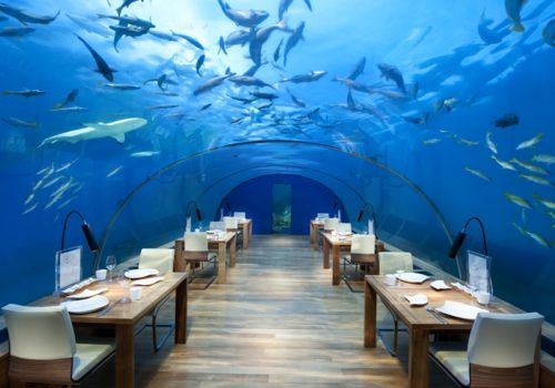 Conrad Rangali underwater restaurant