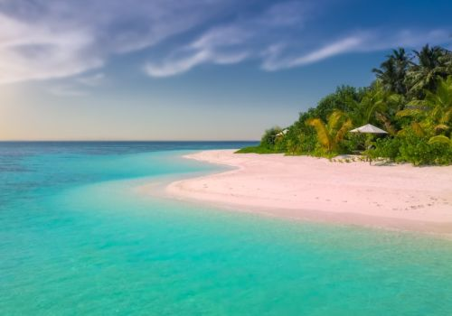 Pink Sand Beach in the Bahamas