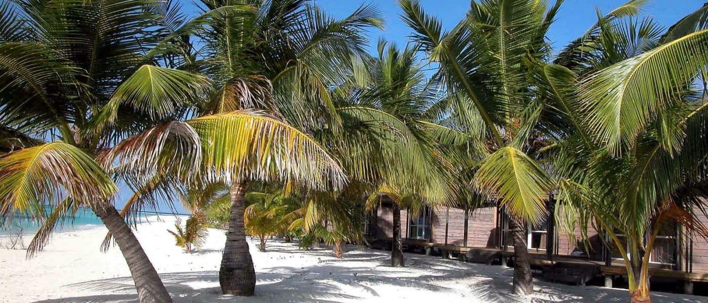 Kuredu Maldives  beach
