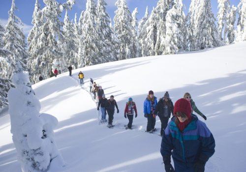 snowshoe-walk-1251418_1280