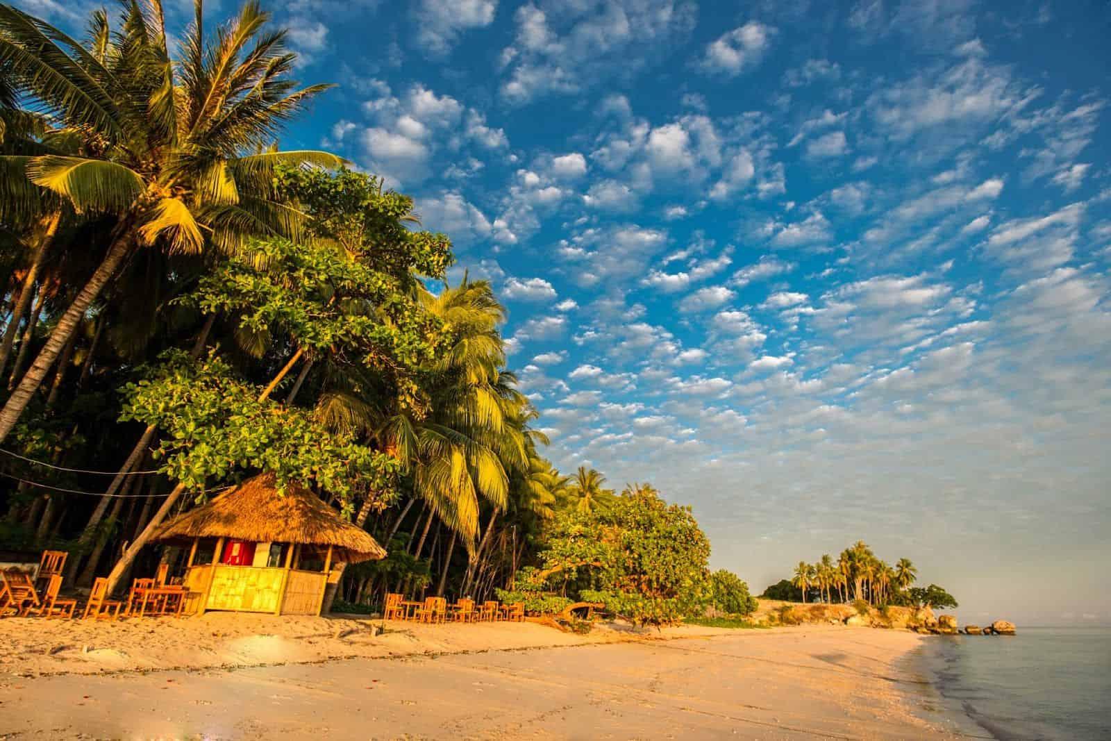 Timor Liste